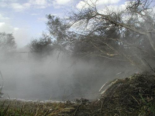 Kuirau_Park-Rotorua boy dies
