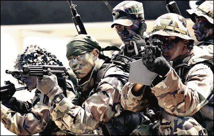 south korean navy somali pirates