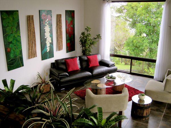 indoor plants fresh and healthy