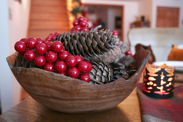 inexpensive-bowl-of-pine-cones