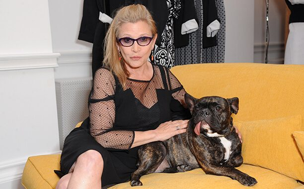 carrie_fisher_dog_pet
